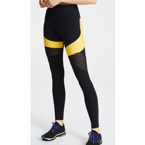 ONZIE ROYAL LEGGINGS—High Waisted